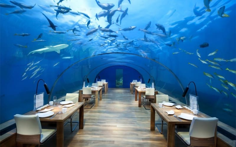 Bridebook.co.uk- underwater restaurant
