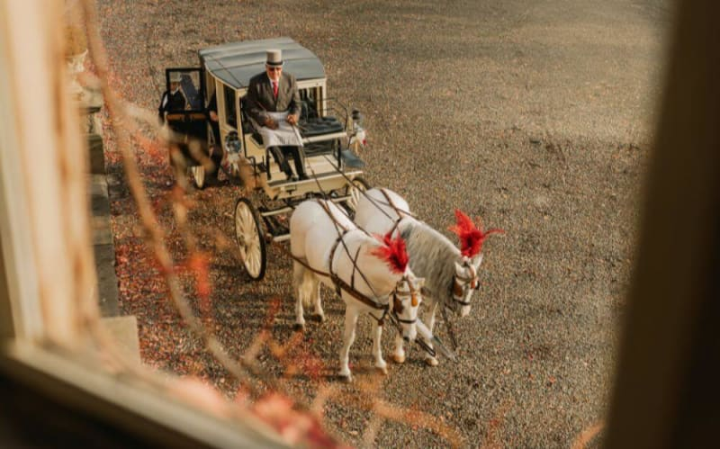 Carriage being pulled by two white horses.