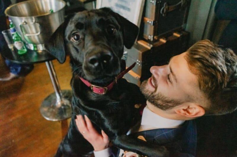 The groom holds a black labrador dog.