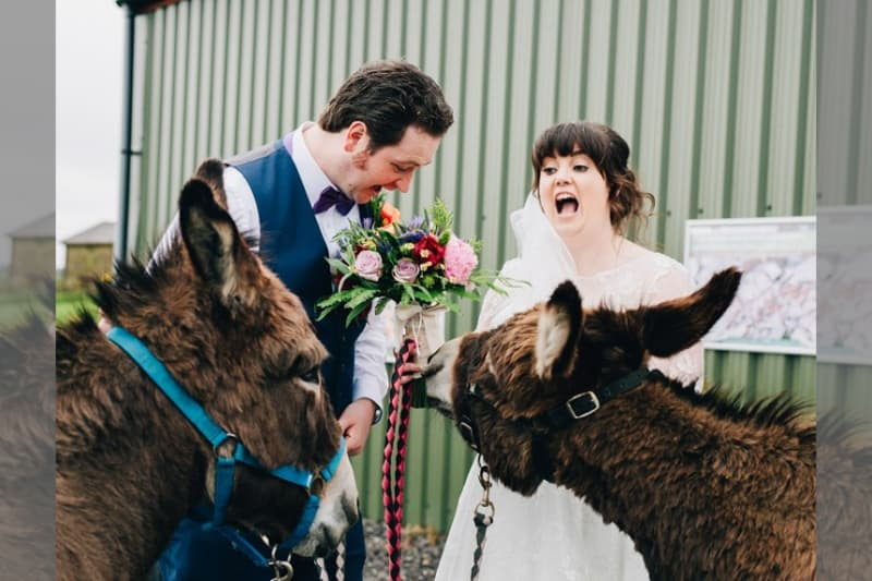 bridebook.co.uk real weddings bespoke bride wellbeing farm