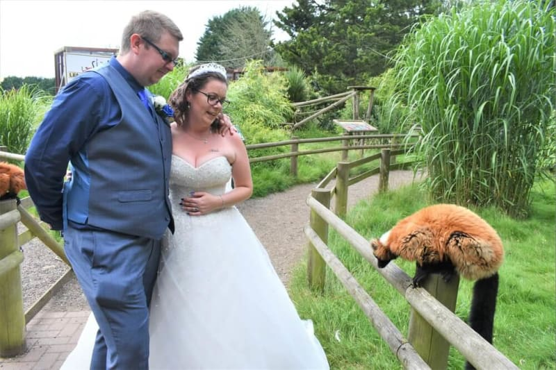 A couple looks at a lemur in the garden.