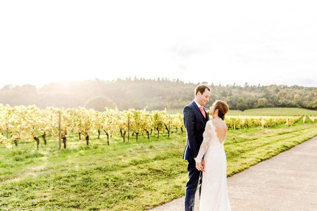 Vineyards lit up with sunshine as newlyweds stare into each other eyes.