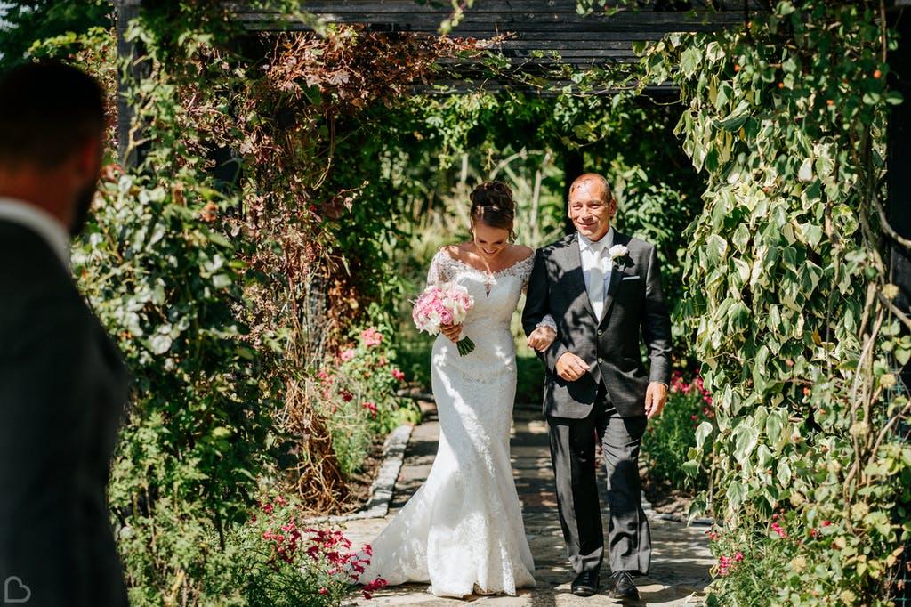 Newlyweds walk under the vineyard.