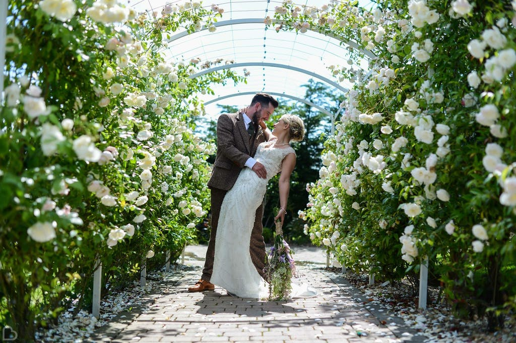 Newlyweds pose in amidst white roses.