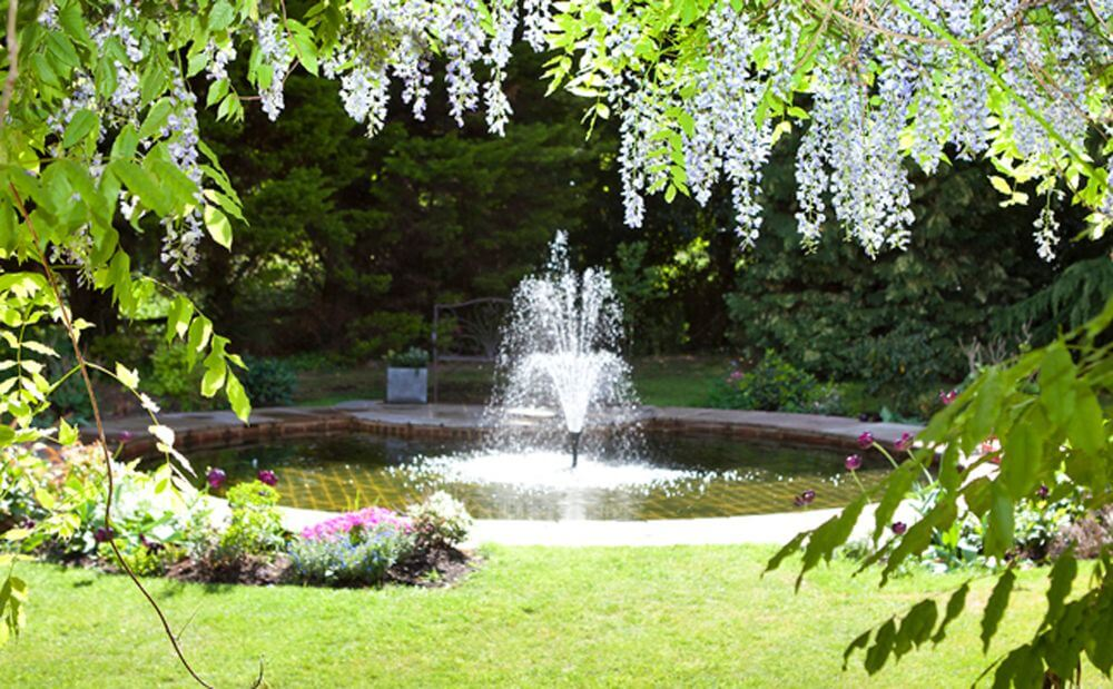 the fountain in the garden surrounded by greenery.