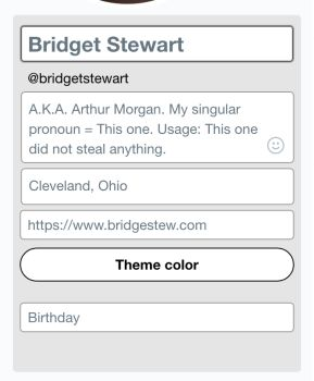 Twitter Edit Profile panel showing that the 4th input is where the link back to bridgestew.com goes.