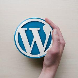 Hledají se WordPress programátoři