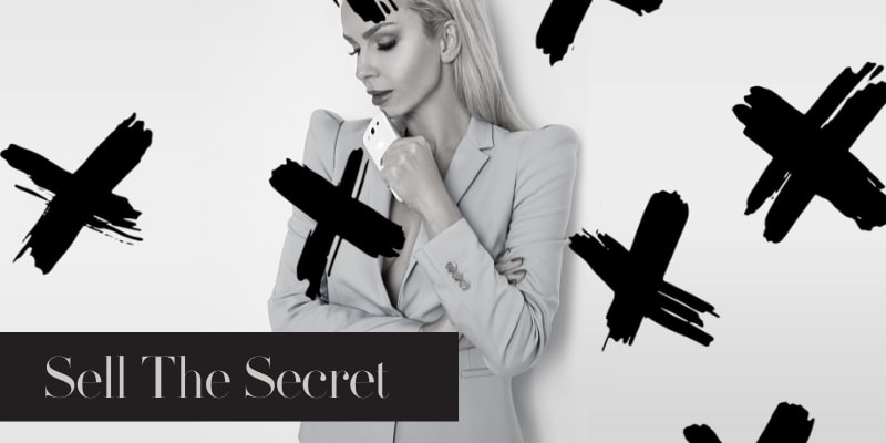 Sell the Secret FREE E-Book - Bring On Salon Success Online Business Course