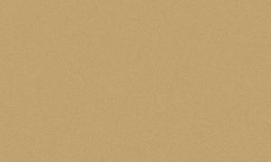 Металлик золото F571 ST2