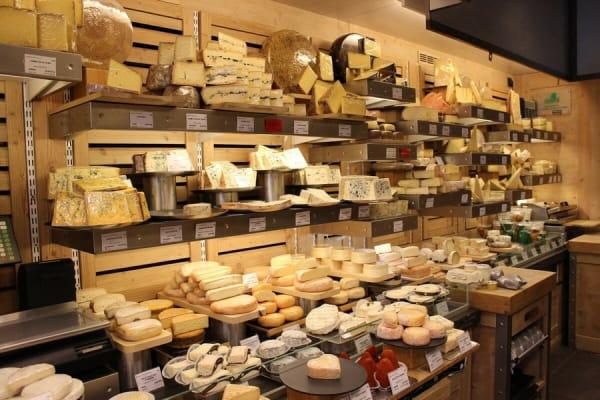 Мебель для Сыра