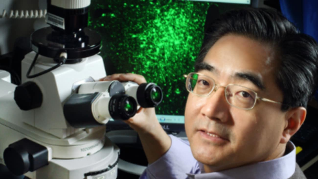 For nearly two decades, Sheng Bi and colleagues have been teasing out neural signal pathways in rat brains that transform white fat into calorie-burning brown fat. The research has drawn great interest for its potential to treat obesity and diabetes.
