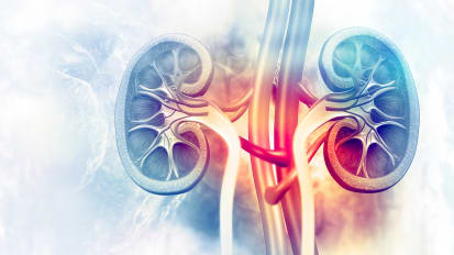 Updates in Diagnosis and Management of Rejection in Renal Transplantation