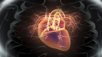 10th Annual Cardiovascular Disease Update