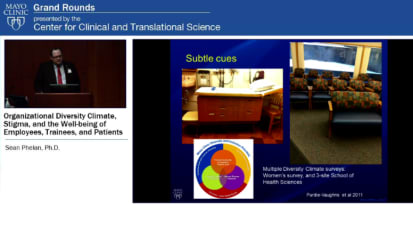 Grand Rounds: Organizational Diversity Climate, Stigma, and the Well-being of employees, trainees, and patients