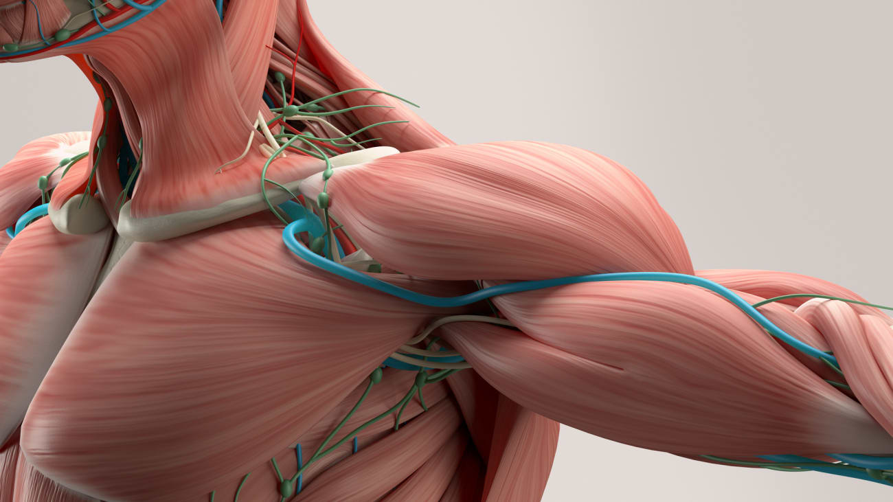 Thoracic Outlet Syndrome (TOS) Q & A