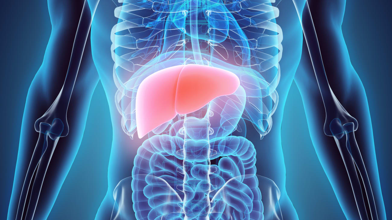 Liver Transplant The Surgery Recovery And Quality Of Life Qa