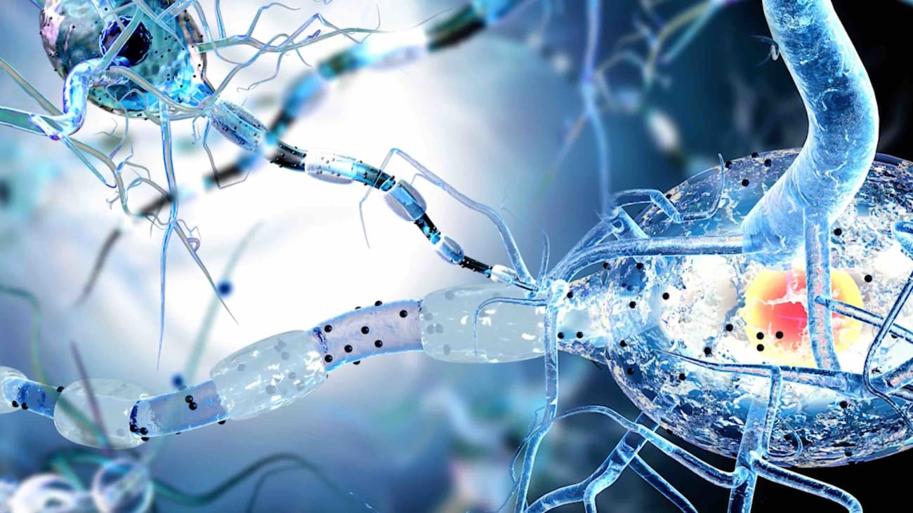 #TomorrowsDiscoveries: The Effects of Huntington's Disease