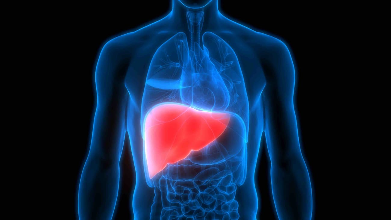 Liver Transplantation in a Patient with Severe Alcoholic