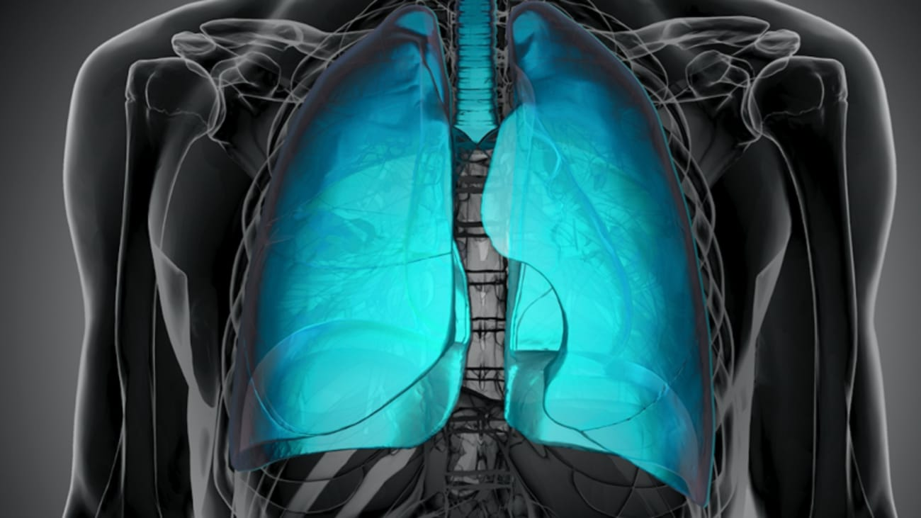 Lung Cancer: Do you think you have anything to offer?