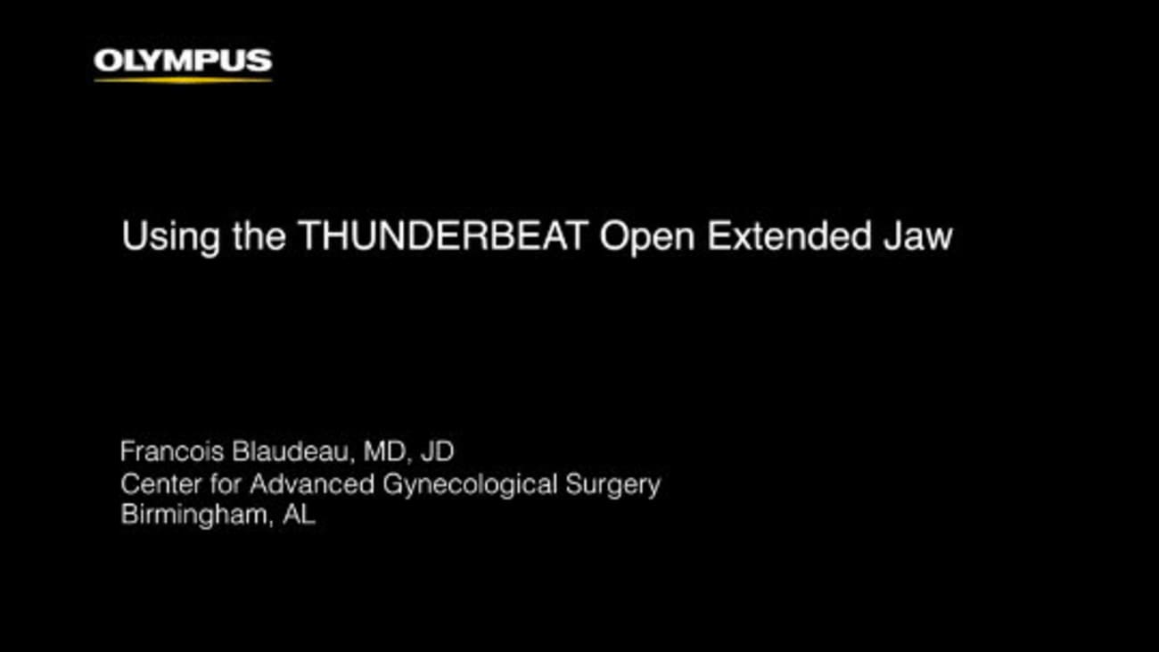 Total Abdominal Hysterectomy with THUNDERBEAT Open Extended Jaw  - Francois Blaudeau, MD, JD