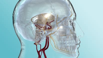 Trigeminal Neuralgia Symptoms and Treatment Options