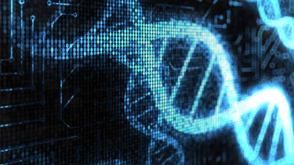 Widely Used Reference for the Human Genome is Missing 300 Million Bits of DNA