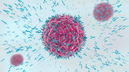 Cancer Immunotherapy: From Model T to Ferrari