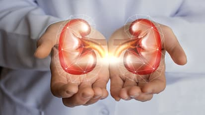 Deceased Kidney Transplant Donors with Acute Kidney Injury