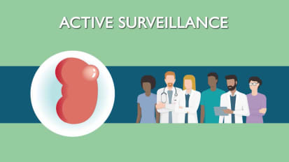 Active Surveillance for Kidney Cancer
