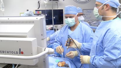 Endoscopic Endonasal Pituitary Surgery