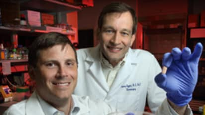 Surprise Finding Yields a Possible Tumor-Fighting Drug