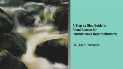 A Step-By-Step Guide to Renal Access for Percutaneous Nephrolithotomy