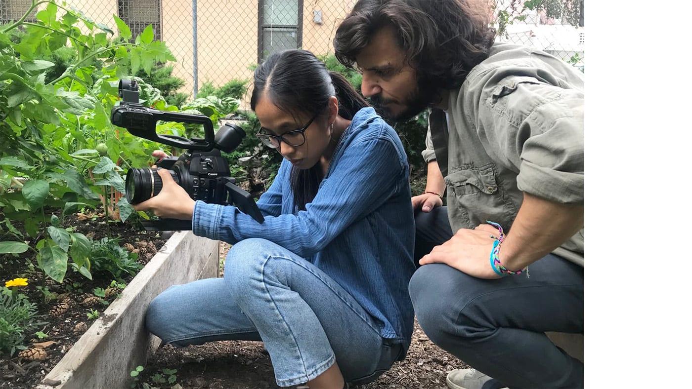 BDC Films Fellowship