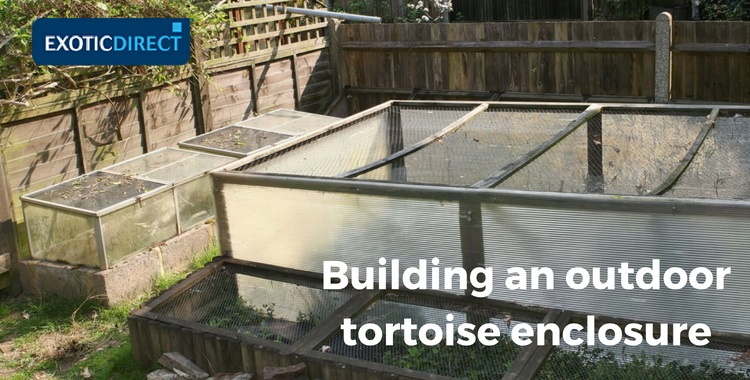 three different tortoise enclosures