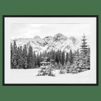 The Winter Print