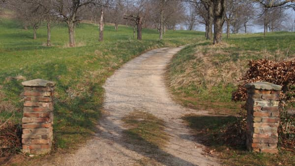 An entrance to a pathway in a rural setting