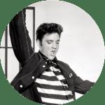 The Elvis Concert