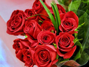 In addition to meeting all of your demands - here are some roses. Thanks for being a resident!