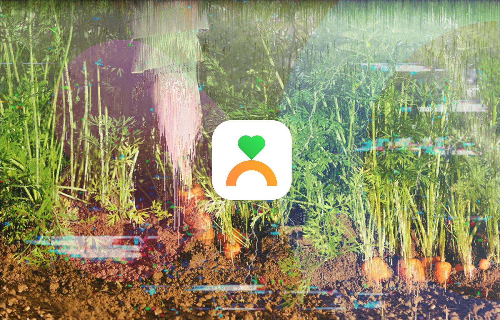 Carrot Tech Tuesday Feedback
