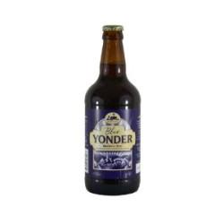Blue Yonder Blueberry Beer