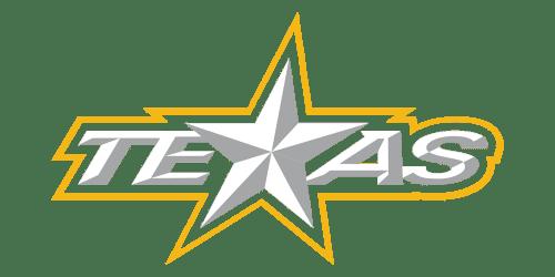Texas Stars Budgyt Case Study
