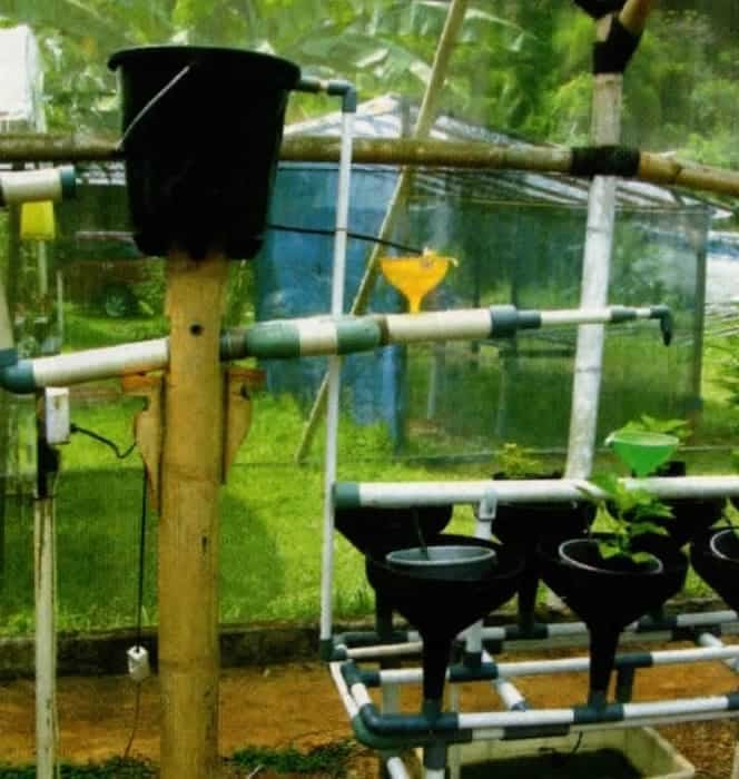 penyiraman hidroponik