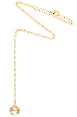 Estella Bartlett Gold Shell and Pearl Necklace