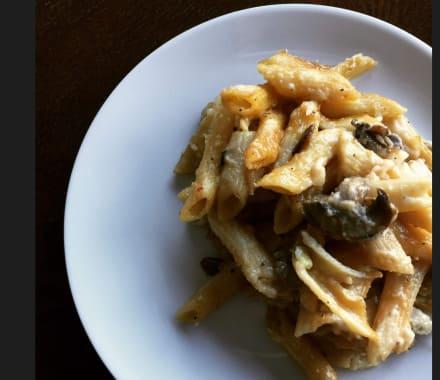 Creamy Mushroom Pasta Bake Bunch