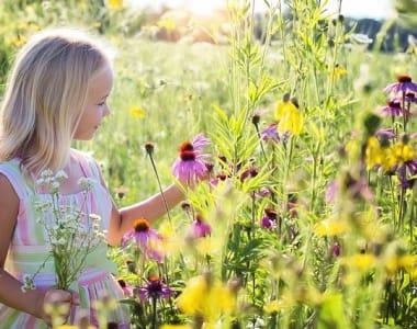 Omas for Future schützt die Natur mit dieser Petition