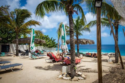 Familievakantie Bonaire Beach A Dive Resort Grand Windsock Bonaire Vertrek Tijdens Schoolvakantie