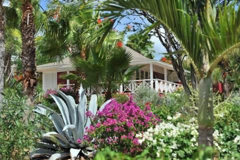 Goedkope herfstvakantie Curaçao - TIME TO SMILE Chogogo Dive & Beach Resort