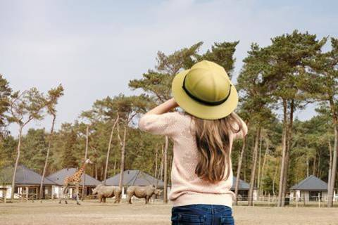 Goedkope vakantie Noord-Brabant - Safari Resort Beekse Bergen