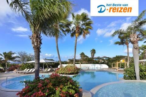 zomervakantie-curacao-time-to-smile-chogogo-dive-a-beach-resort-vertrek-10-juli-2021(1596)