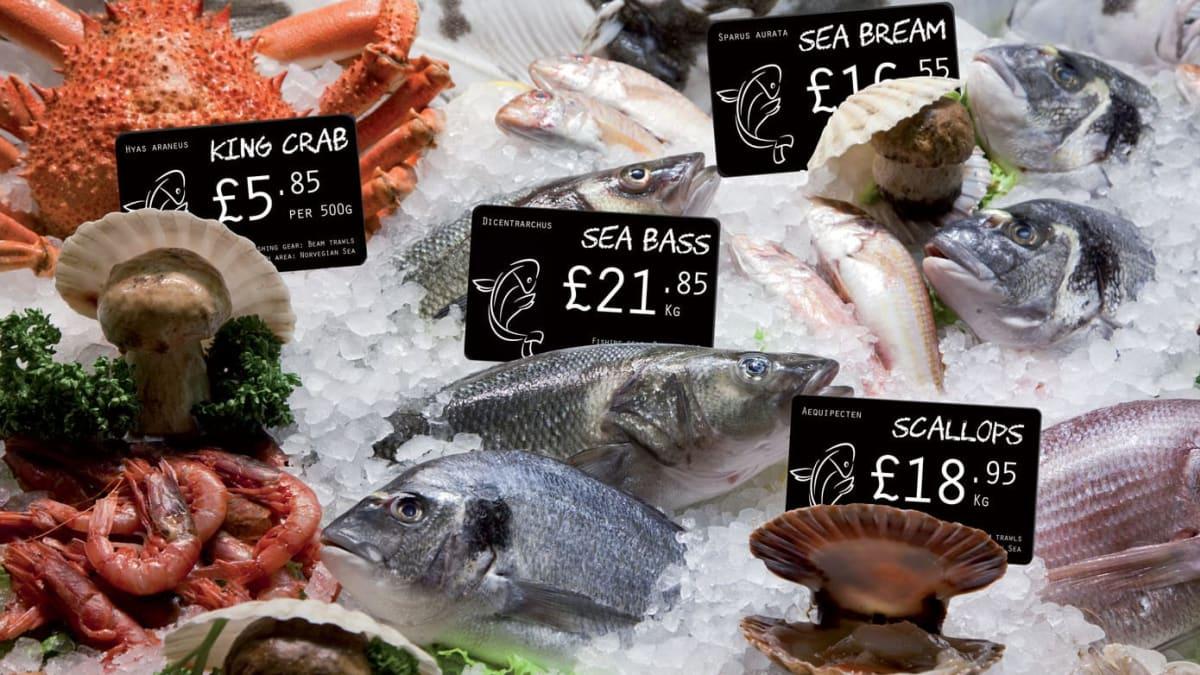 Fiskebutikker (Fiskehandel)